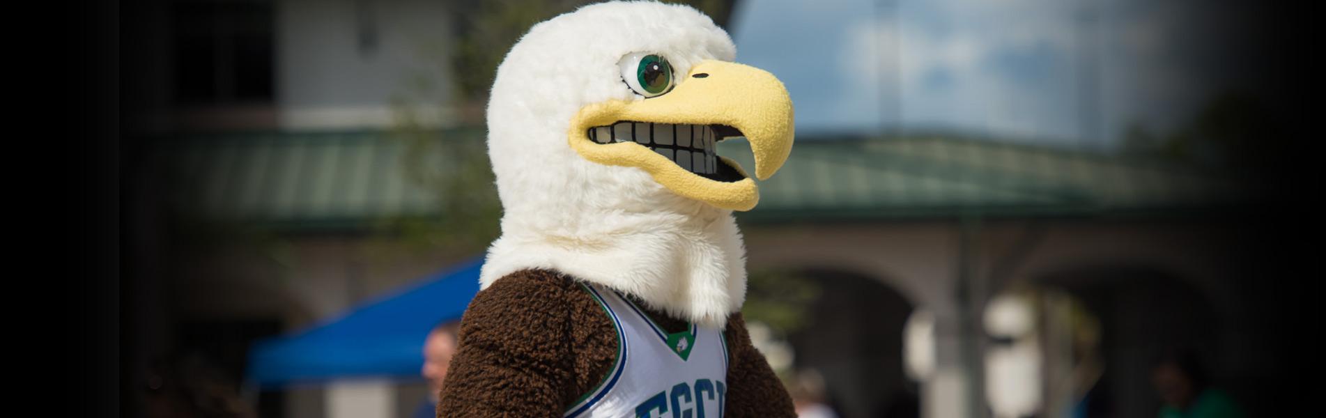 FGCU mascot - Azul