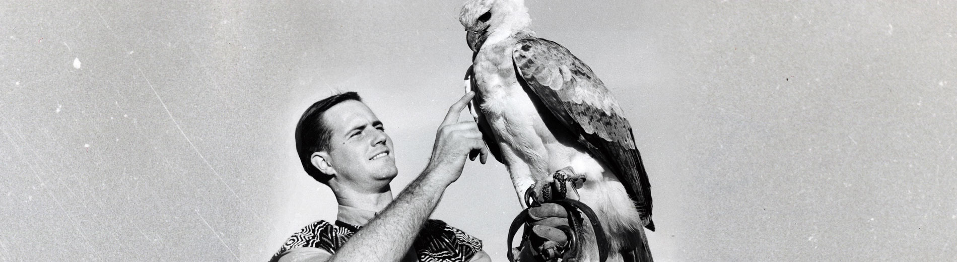 Jim Fowler handling eagle