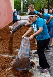 Photo shows FGCU students doing volunteer work