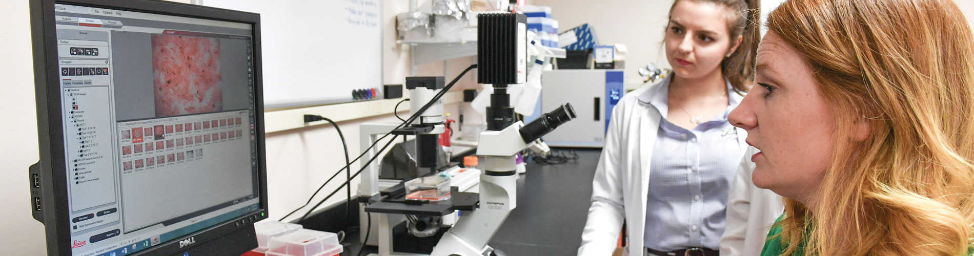 Photo of Cancer Research at FGCU Classroom