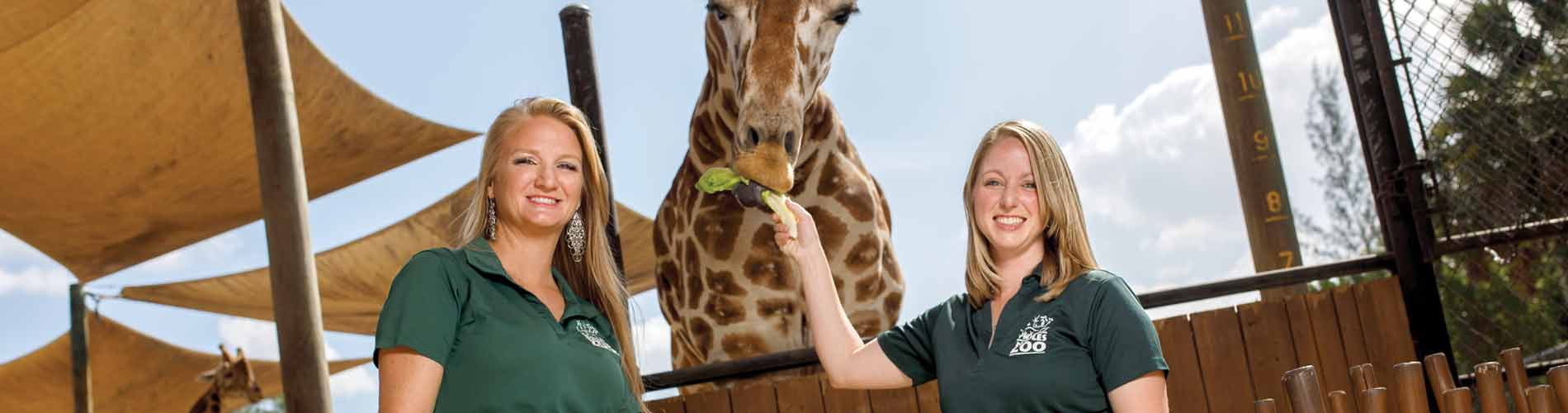 Alumna helps build education program at Naples Zoo
