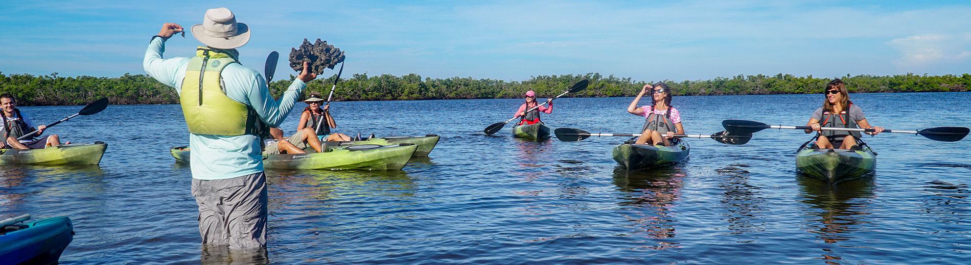 Photo shows kayak nature tour