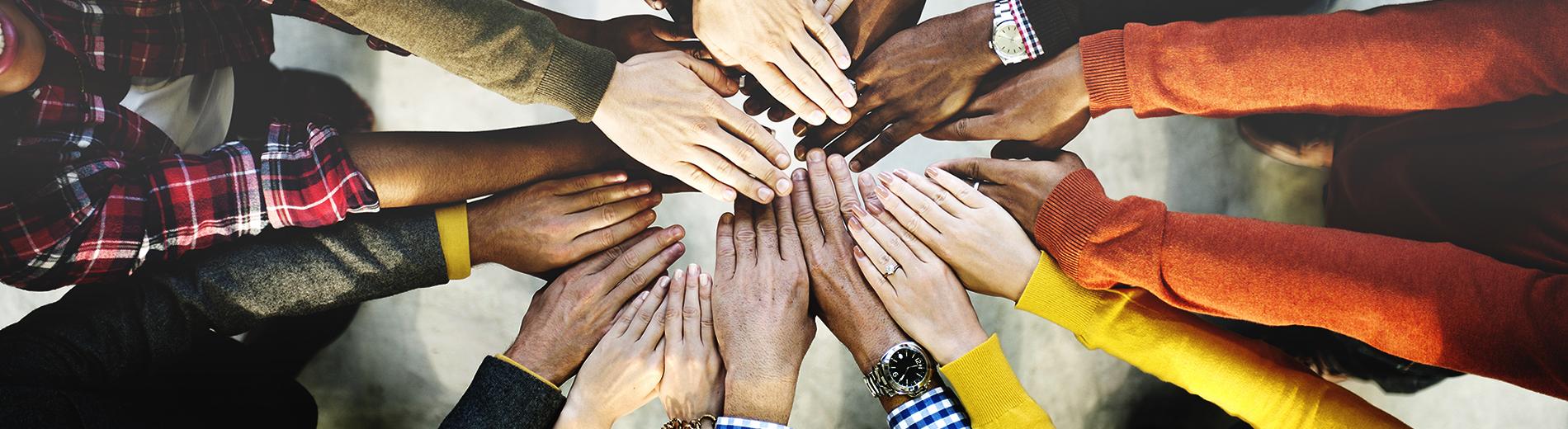 photo shows diversity
