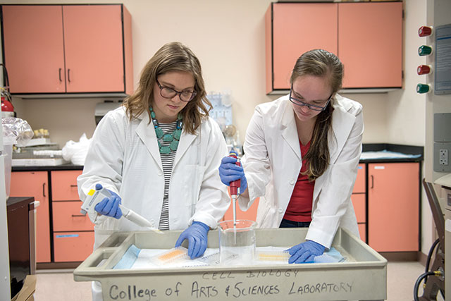 photo of FGCU students working in a lab