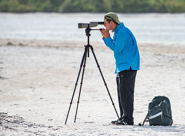 photos shows a birdwatcher