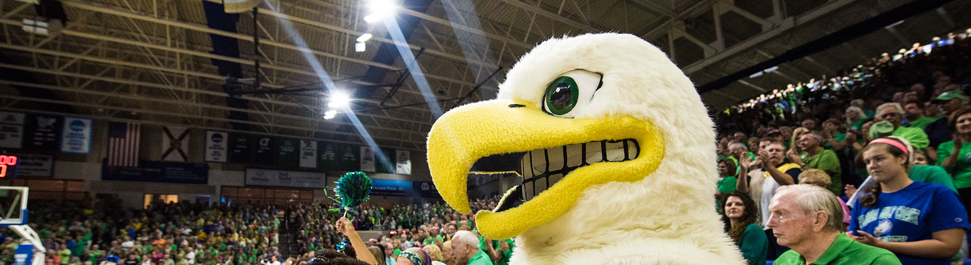 Photo shows FGCU mascot