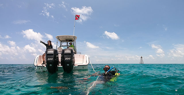 Photo shows FGCU researchers diving in the Florida Keys.