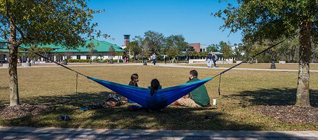 Photo shows FGCU lawn
