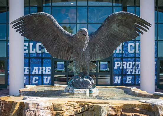 Photo shows the FGCU eagle