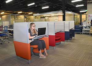 Photo shows work cubicles