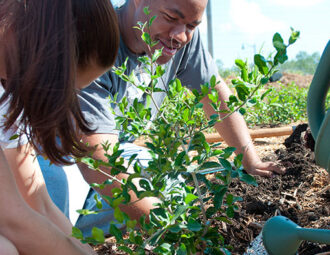 Food Forest yields lifelong benefits for students, alumni