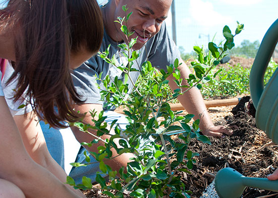 Photo shows students working in garden
